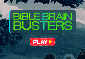 Bible Brain Busters